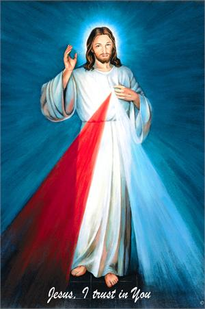 A high quality Blue Hyla Divine Mercy picture.